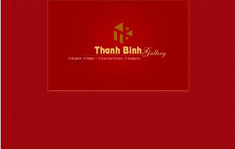 thanhbinhgallery_website